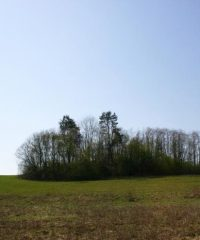 Radžionių piliakalnis
