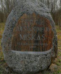 Lithuanian millennium forest