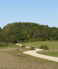 Alksniai Mound