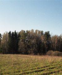 Alseta mound
