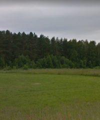 Bryzgiai mound