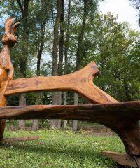 Парк зайцев